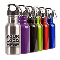 17 oz. BPA Free Stainless Steel Bottle Includes Carabiner Clip